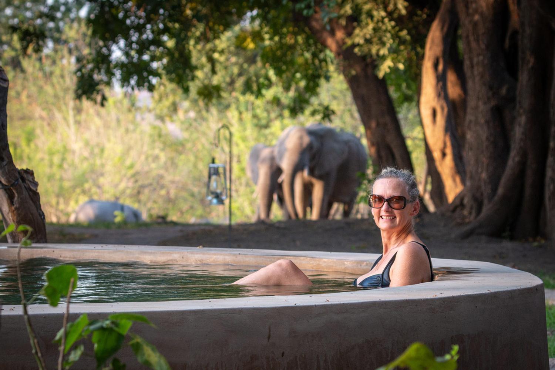 bumbusi wilderness camp hwange national park elephant swimming pool