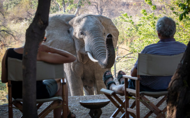 bumbusi wilderness camp hwange national park