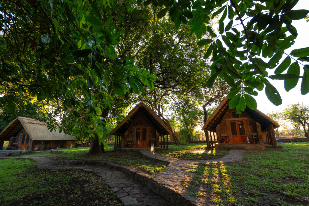 bumbusi wilderness camp hwange national park chalets