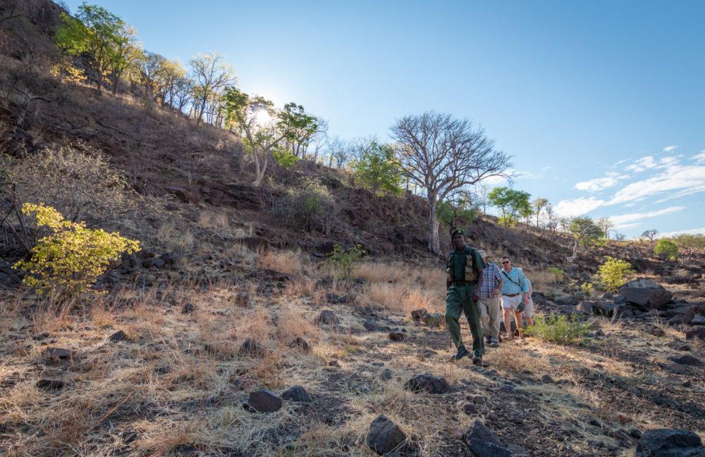 bumbusi wilderness camp hwange national park walking safari