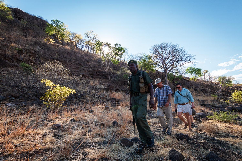 bumbusi wilderness camp hwange national park walking